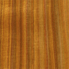 Canarywood - Exotic Tropical Hardwood
