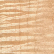 Hard Maple - Curly and Birdseye Maple - Domestic Hardwood