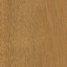 Mahogany - Honduran Mahogany - Brown Tropical Hardwood