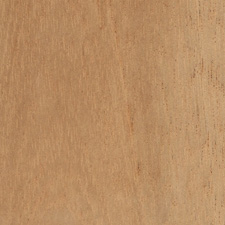 Spanish Cedar - Tropical hardwood from Central America