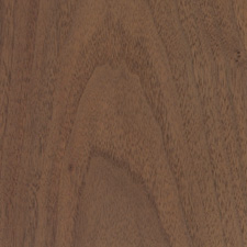 Walnut - Domestic Hardwood